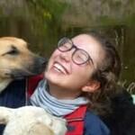 ODI Freiwilligendienst Ecuador Hunde