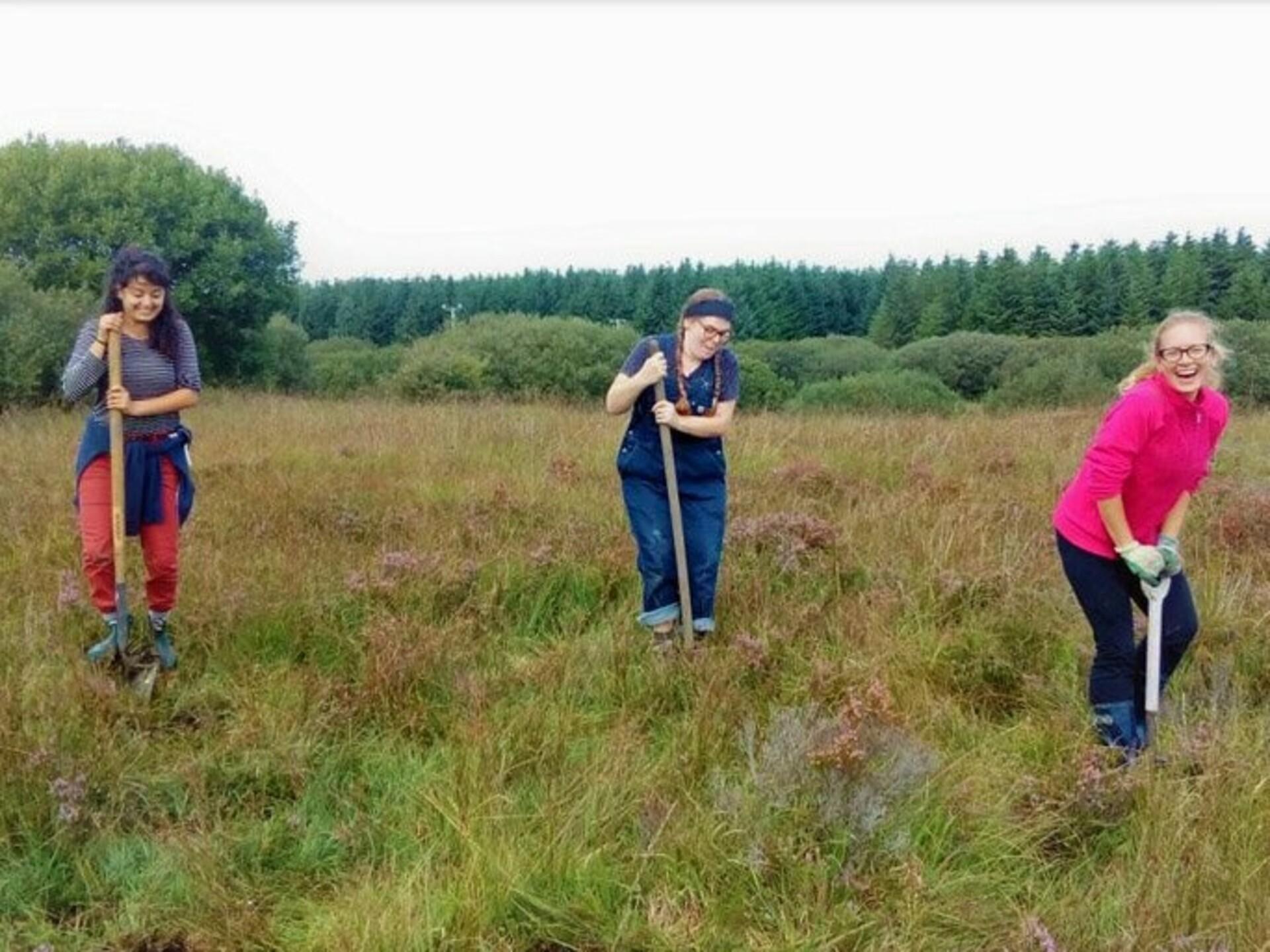 ODI Freiwilligendienst Irland Öko Zentrum